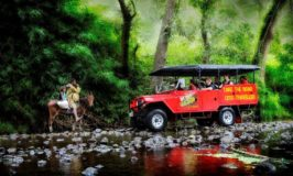Off-Road Cave Safari_Hero Image